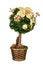 Free Christmas Tree Stock Image - 36177441