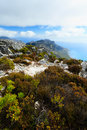 Free Rock And Landscape On Top Of Table Mountain Stock Images - 36188964