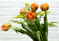 Free Orange Tulips Royalty Free Stock Photo - 3624405