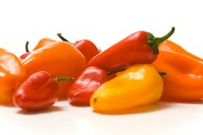 Free Fresh Sweet Peppers Stock Images - 3620074
