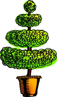 Free Xmas Tree Stock Images - 3620934