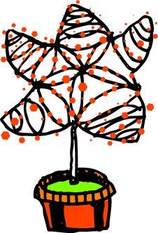 Free Star Tree Stock Photo - 3620980