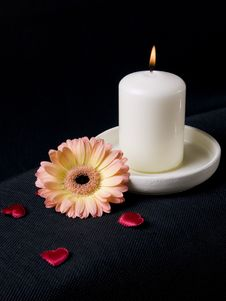 Candle, Gerber And Red Hearts Stock Photography