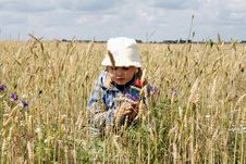 Free In The Wheat Field Stock Image - 3623341