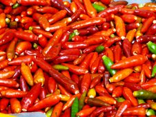 Free Red Hot Chillies Stock Photography - 3623552
