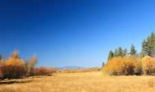 Free Autumn Mountain Meadow Royalty Free Stock Photography - 3625287