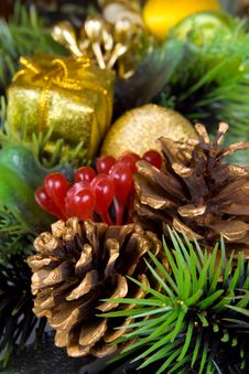Free Pine Cone Close-up Royalty Free Stock Image - 3628066