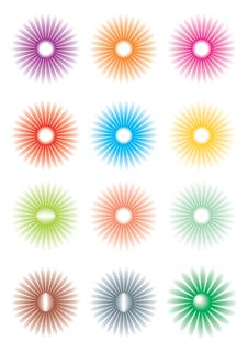 Free Flowers Of Different Color Stock Images - 3628934