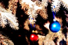 Free Christmas Ornament Stock Photography - 3629972