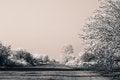 Free Freezing Fog Stock Photos - 36201063