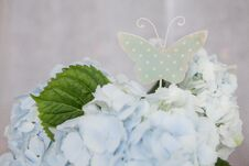 Free Sing Of Butterfly And Blue Flowers Royalty Free Stock Images - 36215759
