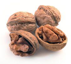 Free Walnuts Stock Photos - 36219633