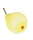 Free Yellow Pear Royalty Free Stock Photo - 36233255