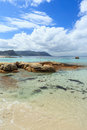 Free Boulders Beach - Cape Town Stock Image - 36247841