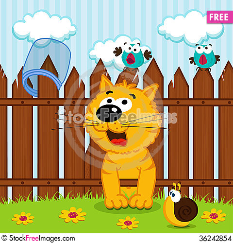 Free Kitten Passes Through The Wooden Fence Stock Images - 36242854