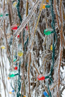 Free Outdoors Christmas Tree Frozen In Crude Winter Royalty Free Stock Photos - 36248008