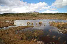 Free Mount Ruapehu From Waitonga Falls Walking Track Stock Photo - 36248640