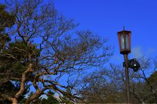 Free Lamp Post In Autumn Stock Photography - 36255692