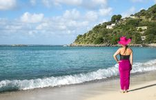 Free Back View Of A Woman Standing On The Beach 1 Stock Photography - 36260262