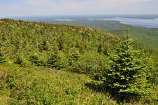 Cadillac Mountain In Acadia National Park, Maine Stock Photos