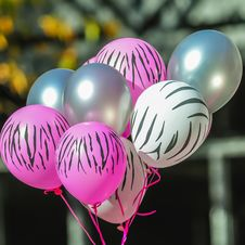 Free Pink And White Zebra Balloons At Breast Cancer Awareness Royalty Free Stock Photos - 36263628