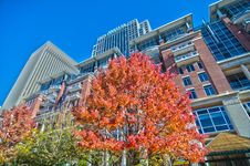 Free Autumn View Of A City Skyline Royalty Free Stock Image - 36264176