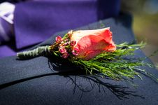 Free Flower Buttonhole Stock Images - 36271314