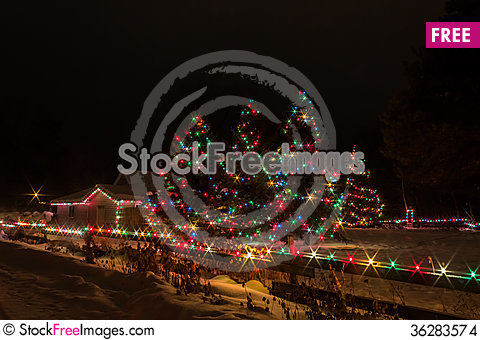 Free Christmas Trees Stock Images - 36283574