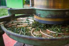 Free Green Tea Oven Dryer Machine Stock Image - 36280601