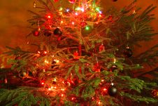 Free Christmas Tree Stock Images - 36283254