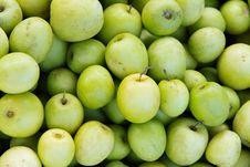 Fresh Monkey Apple Fruit Royalty Free Stock Photography
