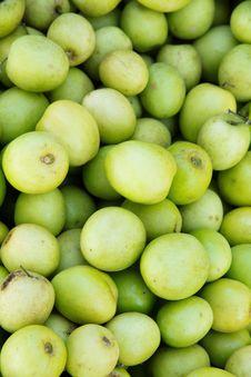 Fresh Monkey Apple Fruit Stock Photography