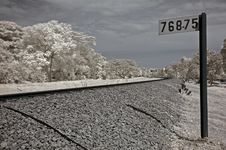 Infrared Photo- Tree, Skies And Train Track Royalty Free Stock Image