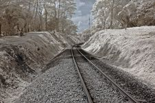 Infrared Photo- Tree, Skies And Train Track Royalty Free Stock Images