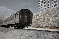 Free Infrared Photo- Tree, Building And Train Royalty Free Stock Photo - 3630505