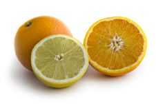 Free Isolated Oranges & Lemons Royalty Free Stock Image - 3635836