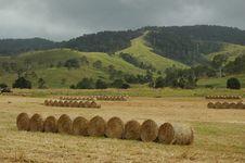 Free Hay Rolls Royalty Free Stock Photos - 3637608