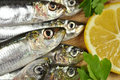 Free Sea Fish With Fresh Parsley And Lemon Stock Photo - 36309220