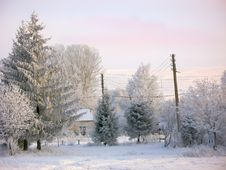 Free Winter Rural Landscape Under Snow Royalty Free Stock Photography - 36317497
