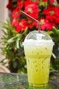 Free Green Tea Royalty Free Stock Photo - 36329685