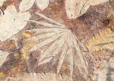 Free Stone Leaf Background Stock Photos - 36326123