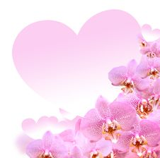 Free Orchid And Heart Royalty Free Stock Image - 36326386