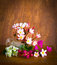 Free Fresh And Colorful Flower Royalty Free Stock Photography - 36329537