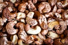 Free Cashew Nuts Royalty Free Stock Image - 36331606