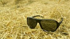 Free Sunglasses On Grass Stock Image - 36332051