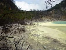 Scene And Vegetation In Crater Kawah Putih Stock Image