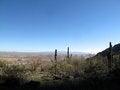 Free Arizona Desert Landscape Royalty Free Stock Photography - 36355387