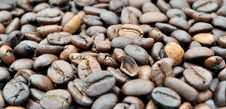 Free Coffee Beans Royalty Free Stock Image - 36353586