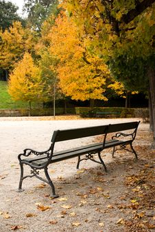 Free Park Schonbrunn Royalty Free Stock Photography - 36364477