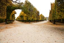 Free Park Schonbrunn Royalty Free Stock Photography - 36364487